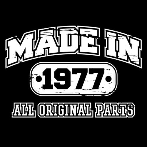 Made In 1977 T-Shirt-39th Birthday T-Shirt