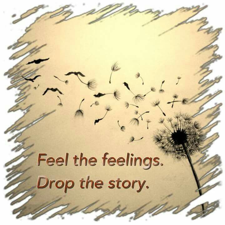 Feel the feelings. Drop the story.