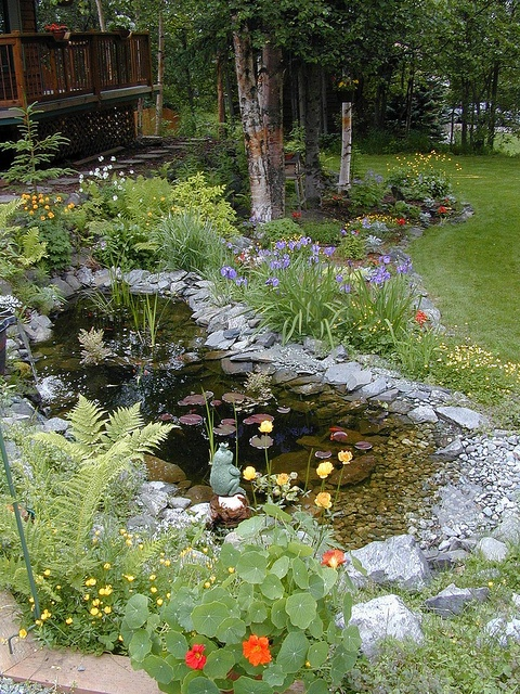 73 Pond Images Let You Dream Of A Beautiful Garden: 17 Best Images About Great Gardens, By Theme Or Area On