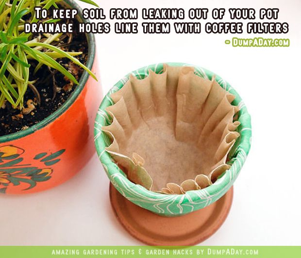 Keep the soil in your pots.