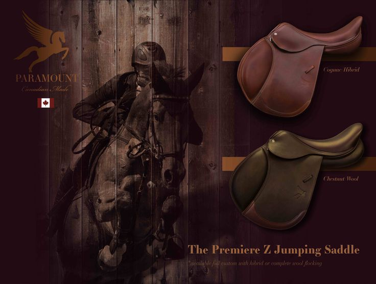Did you know that a custom saddle can help you stay balanced when flatting and when jumping? Premiere Z model available with 100% wool or hybrid panel... Contact us today to schedule and info session or a saddle fitting! info@paramountsaddlery.ca
