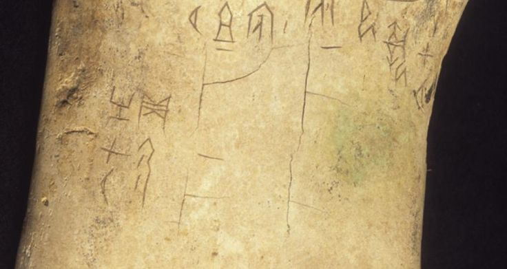 World first as 3,000-year-old Chinese oracle bones go 3D – XissUFOtoday