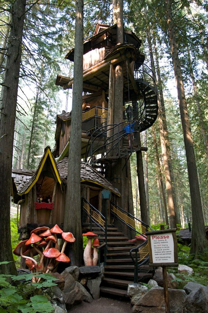 "British Columbia's tallest Tree House.  47 feet high!!  In ""The Enchanted Forest"" between Revelstoke and Sicamous, British Columbia.  http://www.enchantedforestbc.com/"