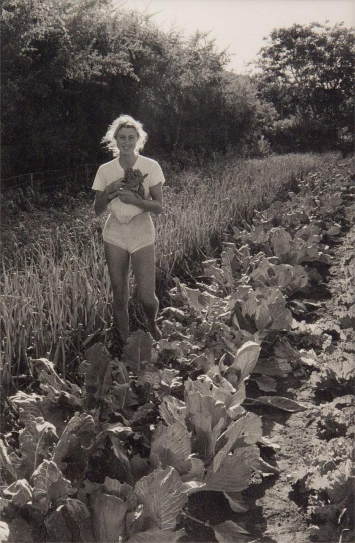 Marti Friedlander  Kelmarna Gardens, Grey Lynn