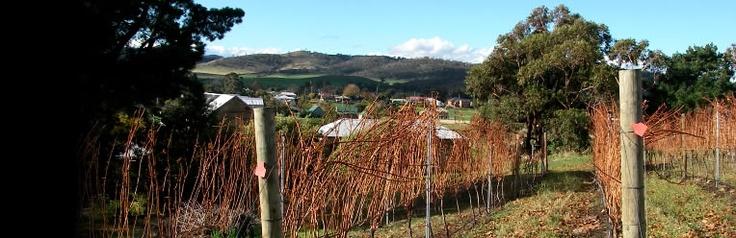 Pooley Wines, Richmond ,Tasmania. First class Tasmanian wines.