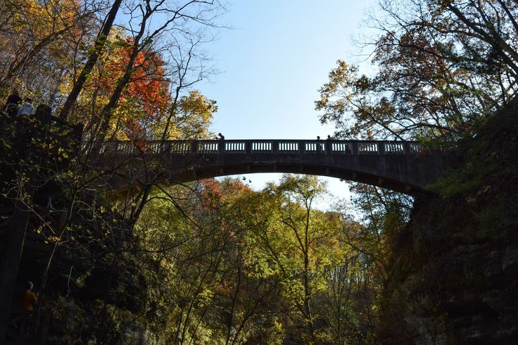 This is the perfect time of year to stretch your legs while taking in the sheer beauty of some of the most awesome forests in Illinois. Here are my top thirteen hiking spots in Illinois: