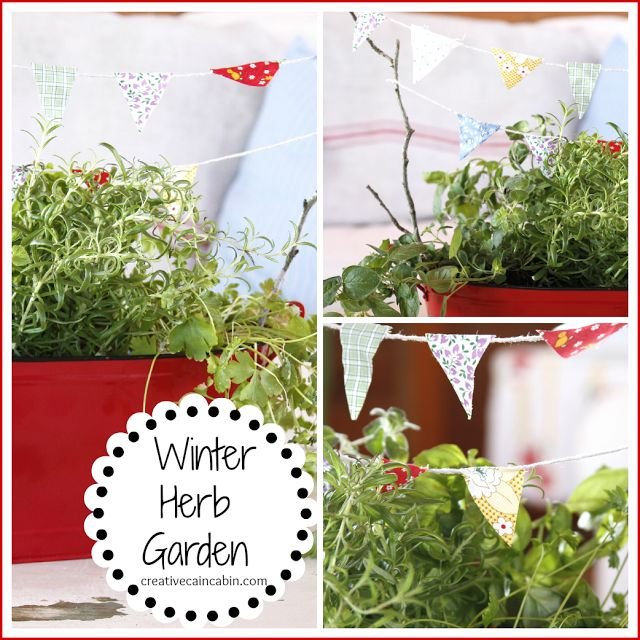 Kitchen Herb Garden Indoor: 1000+ Ideas About Kitchen Herb Gardens On Pinterest