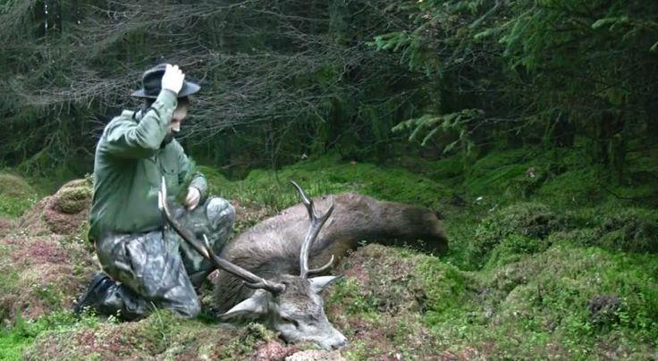 MYSLIVOST: Apartní kamínka pro pobyt v přírodě I Go Camping S...