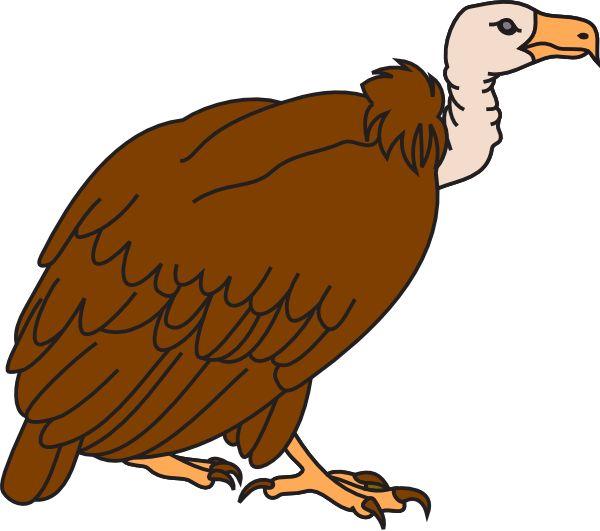 Colored Cartoon Vulture Tattoo On Bicep