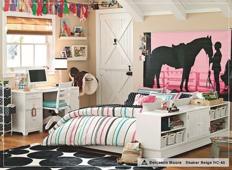 Love the huge horse silhouette on canvas.  Can paint the canvas and add some new color to the room without painting the walls.  Purple background or pink?  Also note the ribbons and the x's on the door look like a barn but so pretty
