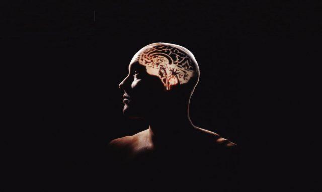 Cómo el cerebro logra fijar los recuerdos de experiencias a largo plazo