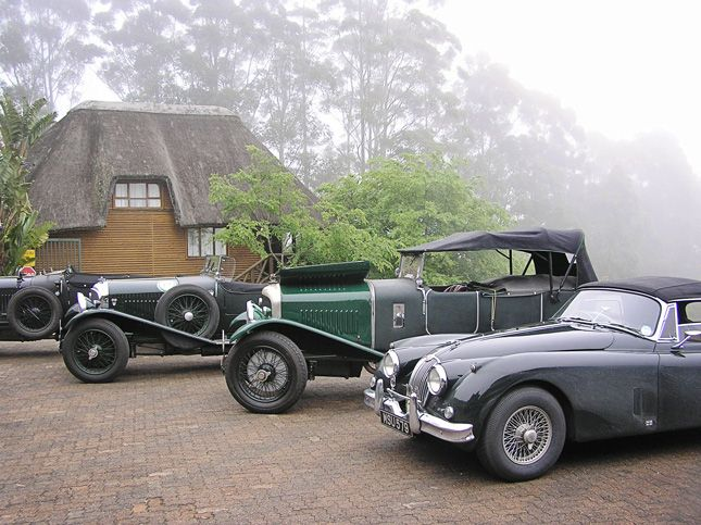 Classic cars @ Ingeli Forest Lodge.