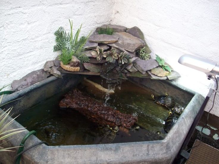 1000 ideas about indoor pond on pinterest indoor indoor water features and tabletop water Diy indoor turtle pond