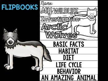 Shop - Online Self Publishing Book & eBook Company - Lulu