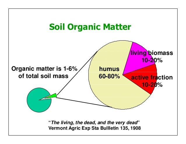 "Soil Organic Matter Organic matter is 1-6% living biomass 10-20% humus of total soil mass active fraction 10-20% humus 60-80% ""The living, the dead, ..."