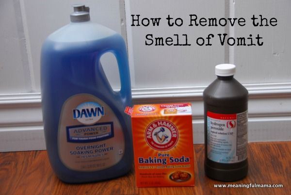 With two kids and two dogs and a manchild husband I'm sure I'll need this one day! --How to Remove the Vomit Smell from Anything