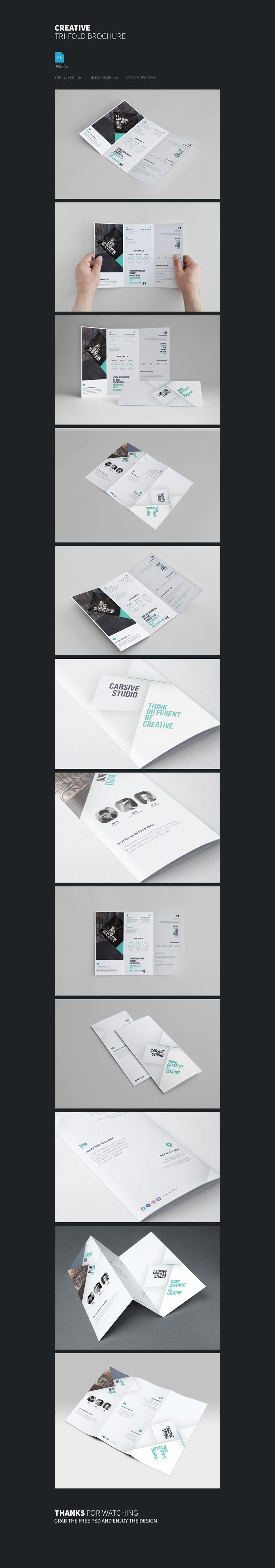Tri fold Brochure Template Freebie on Behance