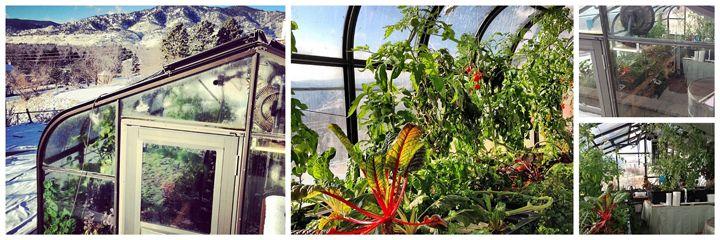 Aquaponic Greenhouses