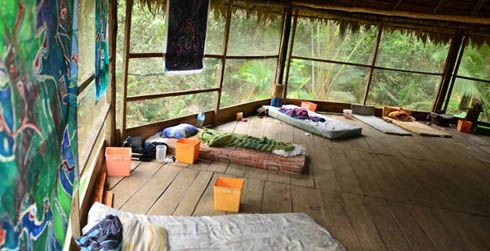 7 Day Authentic Ayahuasca Retreat in Iquitos, Peru  This world is really awesome. The woman who make our chocolate think you're awesome, too. Please consider ordering some Peruvian Chocolate today! Fast shipping! http://www.amazon.com/gp/product/B00725K254