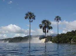 #inmundacion, #canaima