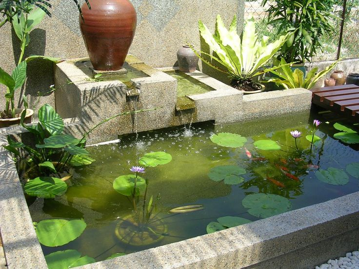 1000 images about cinder block ideas on pinterest for Cinder block pond