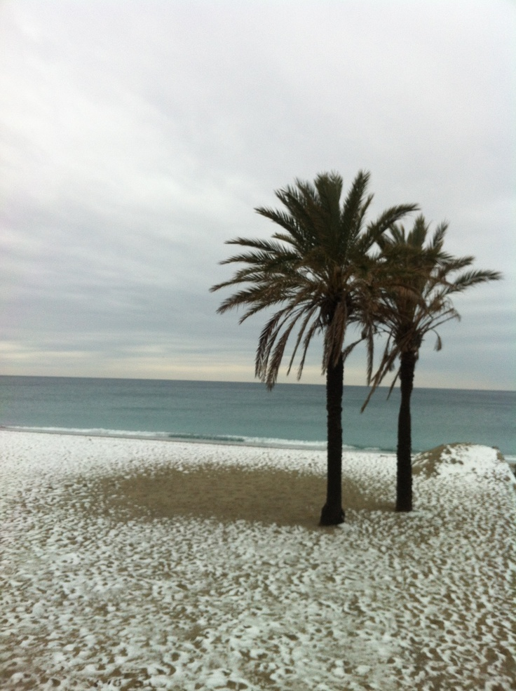 Neve in #liguria  snow in riviera