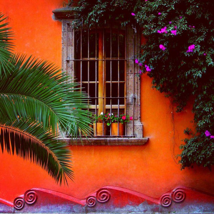 Orange burst of color San Miguel de Allende, México