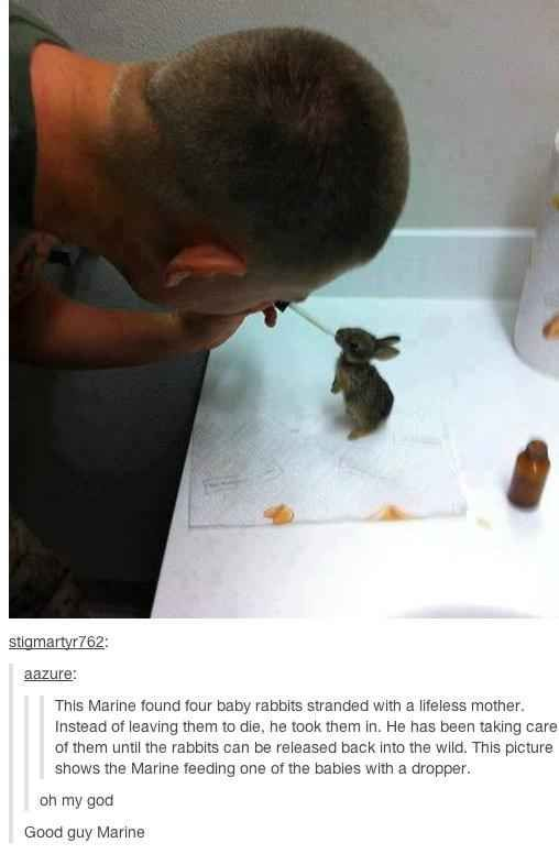 The picture of the nicest Marine in existence. | 35 Pictures That Prove The World Isn't Such A Bad Place