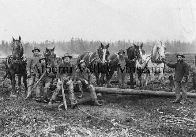 PN06389  Road Crew in Port Alberni, c1915.  [Alberni Valley Museum Photograph Collection]