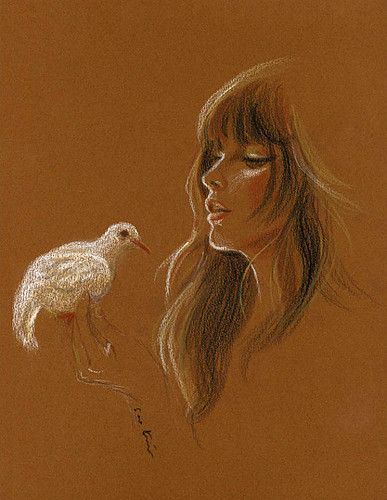 woman holding a white bird - original conte pencil drawing on brown paper