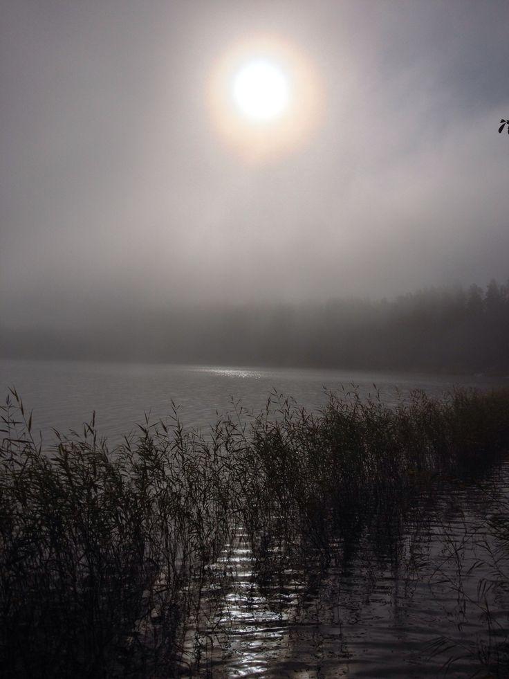 Foggy morning!