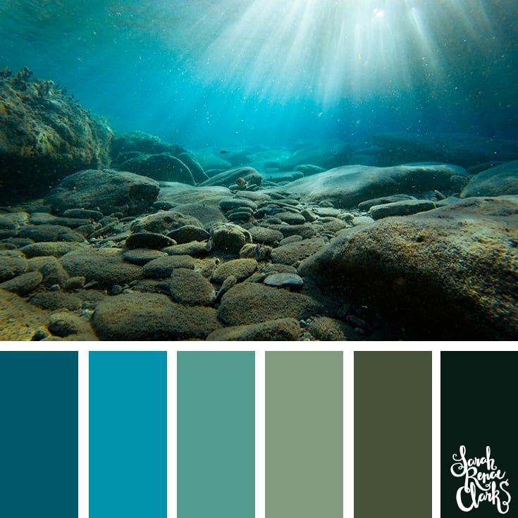 25 Color Palettes Inspired By Ocean Life And Pantone