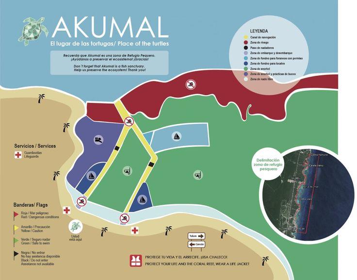 Snorkeling in Akumal Bay | Akumal Direct Reservations