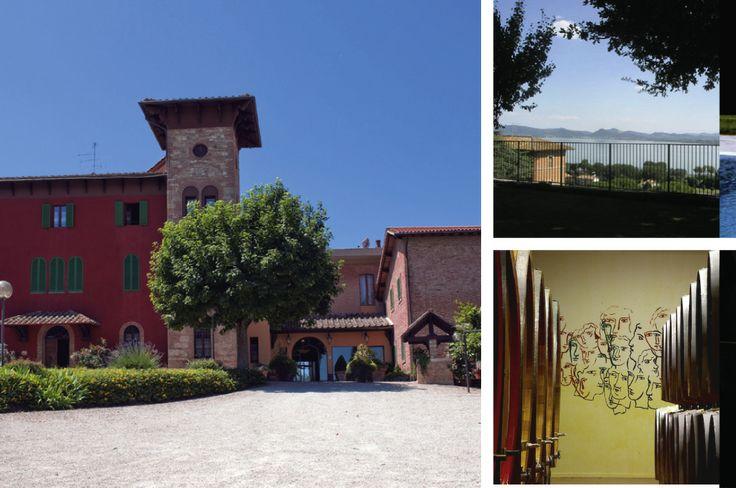 Villa Il Patriarca in der Südtoscana. Blick von der Dachterrasse des B&B Il Torrione auf den Lago Trasimeno (oben). Weinkeller vom Castello Romitorio bei Montalcino.