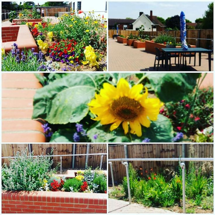 Our Forest Centre Garden coming along quite nicely on this warm Tuesday afternoon! #weareNHFT #insta #makingadifference #makingadifferenceforourpatients #Northamptonshire #pictureoftheday