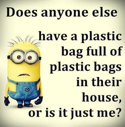 Minions, house, plastic bags? Is it just me? See my Minions pins https://www.pinterest.com/search/my_pins/?q=minions