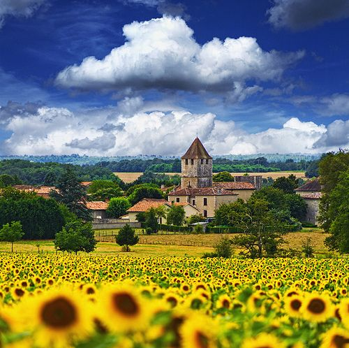 Best  French Countryside Ideas Only On Pinterest Bordeaux - French country side