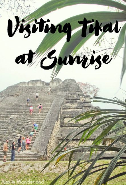 I came to Flores, Guatemala, for the purpose of visiting the Mayan Ruins of Tikal.  I decided on a sunrise tour, and it turned out to be a truly magical experience.