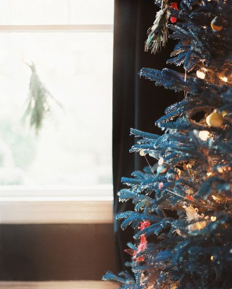 Lisa Sherry Interieurs - A Christmas tree spray painted blue decorated with bulb lights and ornaments