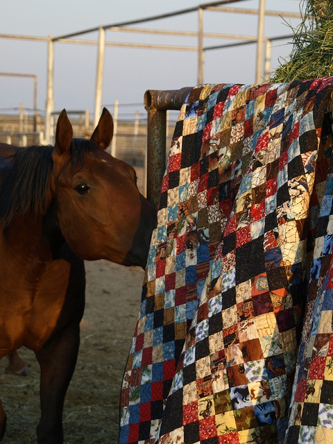 2012.8.11 Many Scappy Trips Western Quilt 181 by Dirt Road Quilter, via Flickr