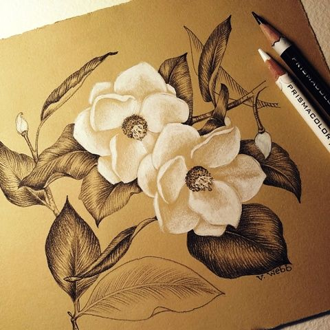 """...a new session of """"Heirloom Garden in Colored Pencil"""" will begin. Back by popular demand, this course includes 10 lessons on drawing old-fashioned flowers and vegetable plants -- plus how to draw..."""
