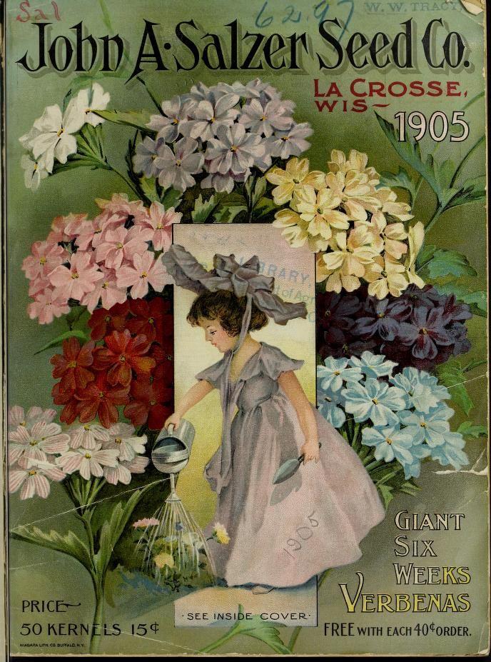 John A. Salzer Seed Co 1905  Catalogue Biodiversity Heritage Library