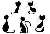 Silhouette : Cartoon kat silhouette collectie