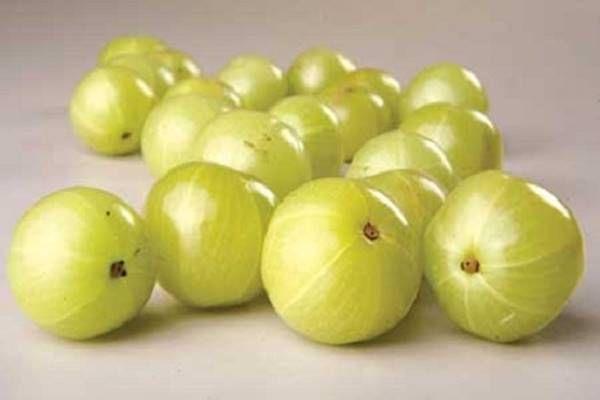 Létezik egy apró kis bogyó, amely a szőlőhöz hasonló kinézettel rendelkezik és igazi csodaszer az egész immunrendszer számára. Nagyon hatékony a szívbetegségekkel és a cukorbetegséggel szemben, ennek ellenére azonban a magyarok többsége mégsem fogyaszt belőle eleget.A hivatalosan köszmétének…