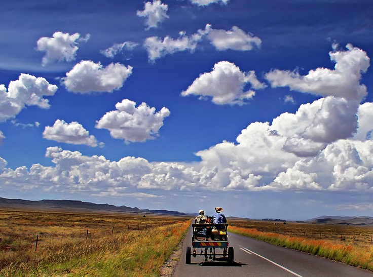 A donkey cart through the Karoo. BelAfrique your personal travel planner - www.BelAfrique.com