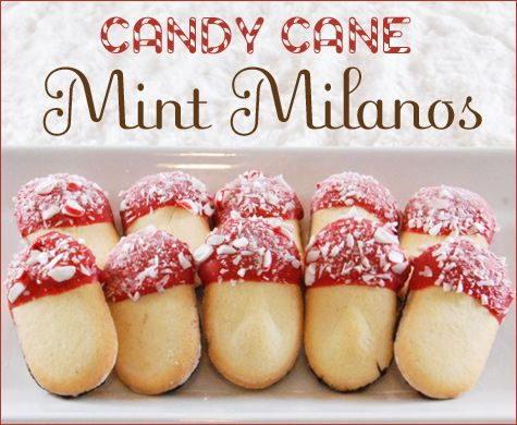 I am doing these!: Christmas Food, Mint Milano, Christmas Cookies, Recipe, Holidays, Candy Canes, Easy Candy, Milano Cookies, Canes Mint