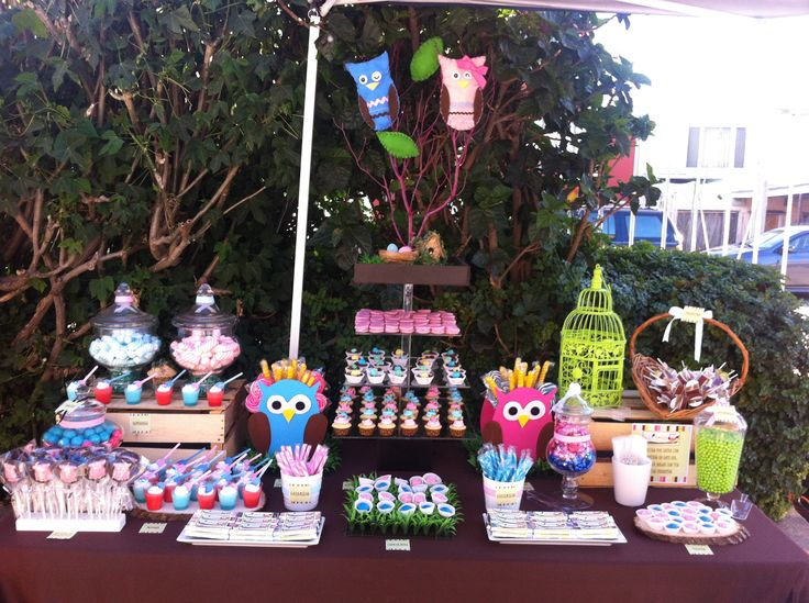 Owl boy and girl baby shower candy table