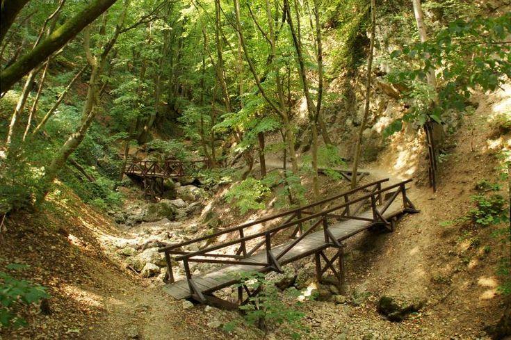 Van, aki a kilátókért rajong, van, akit a barlangok titokzatossága vonz, mások pedig azt állítják, hogy nincs izgalmasabb egy sziklafalakkal szegélyezett, mély völgybe vezető túránál. Nekik ajánlunk öt hazai szurdokot, ahol megcsodálhatják Magyarország legmagasabb vízesését, bebújhatnak az Ördöglikba, sőt akár...