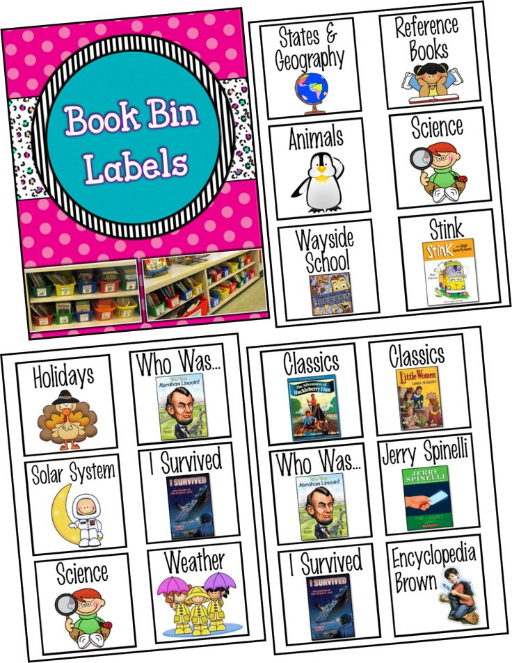 Class Library Book Bin Labels