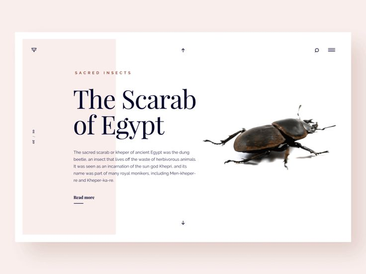 404 Page - WeeklyUI Challenge S02/W02 by Marin Begovic - Dribbble
